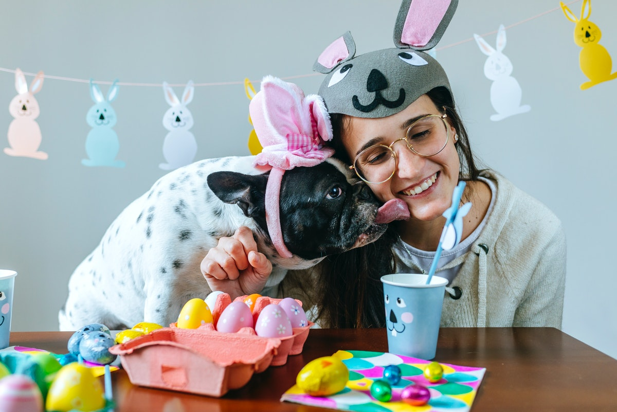 Easter Captions For Your Dog