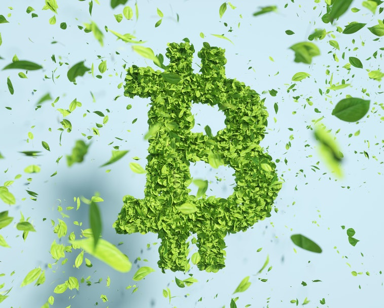 Digital generated image of green bitcoin sign made out of leaves against blue background.