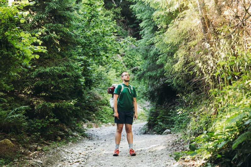 Man backpacker having the hiking trip in the mountain wilderness, walking through the green pine forest during warm summer day