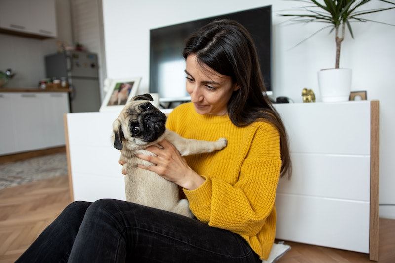 Beautiful young woman playing with her little dog pug