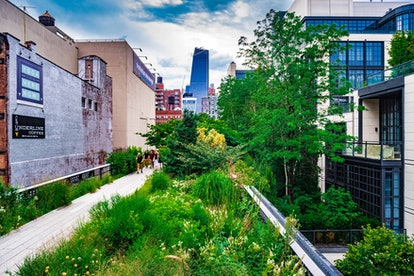 Manhattan's High Line Park, around the Meatpacking District.