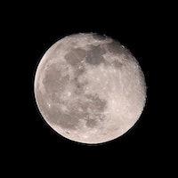 SpaceX Moonshot: How to win a seat on Yusaku Maezawa's trip to the Moon