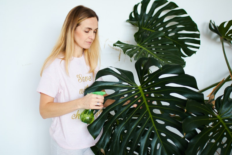 young female taking care of plants at home