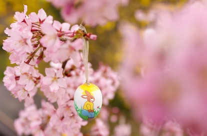 Non-Religious Easter Quotes To Share This Holiday