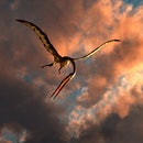 A large Quetzalcoatlus flying in the cloudy sky during the Cretaceous period.