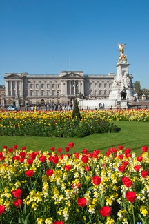 Buckingham palace in the Spring time London England. (Photo by: Education Images/Universal Images Group via Getty Images)