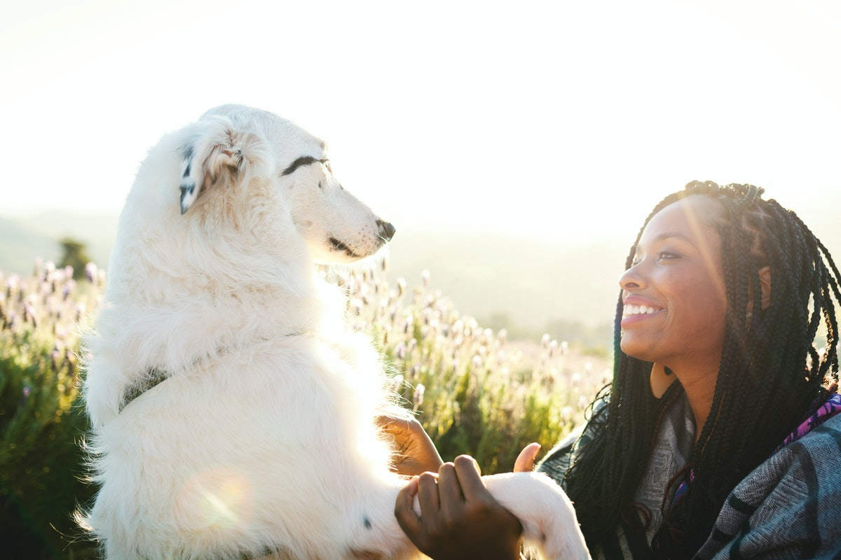 A happy woman looks at her dog in a lavender field