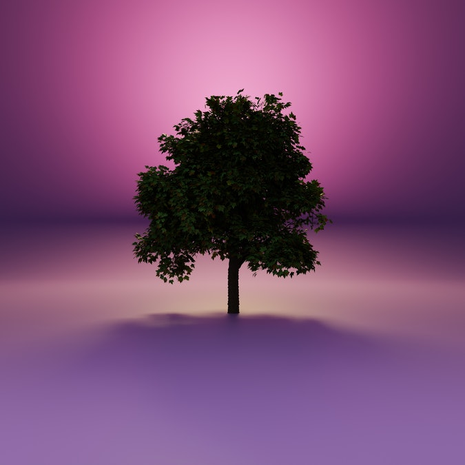 3D Illustration of single maple tree rising from low layer of mist. Deciduous tree in backlight on purple background.