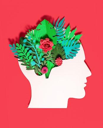brain imagination subnetworks illustration