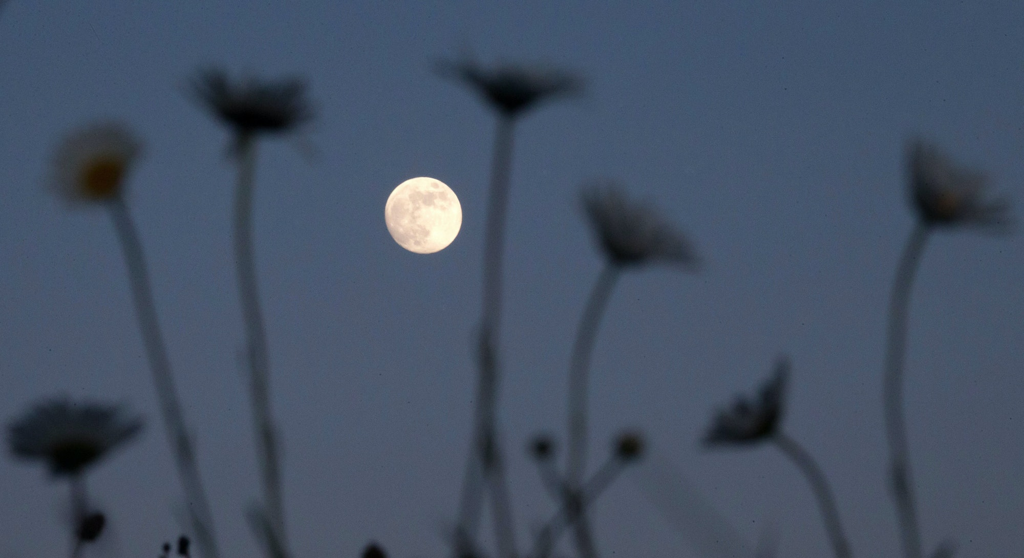 The May 2021 full moon on May 26 is the first eclipse of the year.