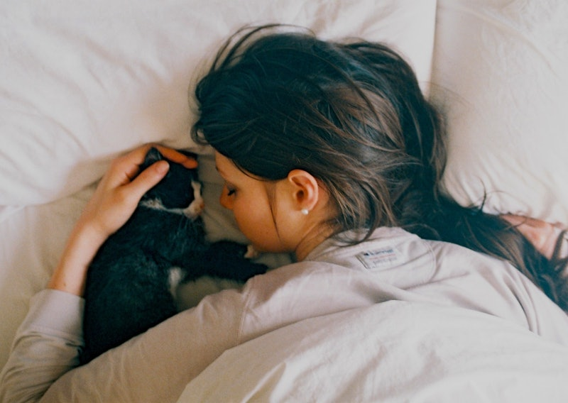 Here's what dreams about cats mean, according to an expert.