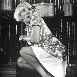 The American actress and singer Doris Day getting frightened with the view of a spider in a scene of 'Caprice'. 1967 (Photo by Mondadori via Getty Images)