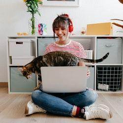 Woman working at home with cat walking across her laptop