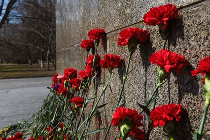 Carnation flowers on a granite memorial plaque at the Bratsk Cemetery in memory of the fallen Soviet soldiers of the 2nd World War. The concept of Victory Day (May 9), the memory of the ancestors, the laying of flowers at the tombstone.