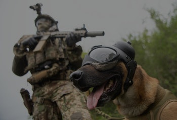 10 May 2021, Baden-Wuerttemberg, Calw: A commando soldier of the German Armed Forces Special Forces Command (KSK), stands in a meadow with an access service dog wearing eye and ear protection during a video shoot for Armed Forces Day. Photo: Marijan Murat/dpa (Photo by Marijan Murat/picture alliance via Getty Images)