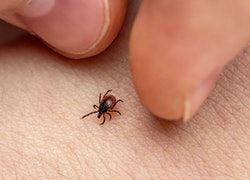 a tick and two fingers