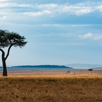 Inverse Daily: We've found the oldest burial in Africa