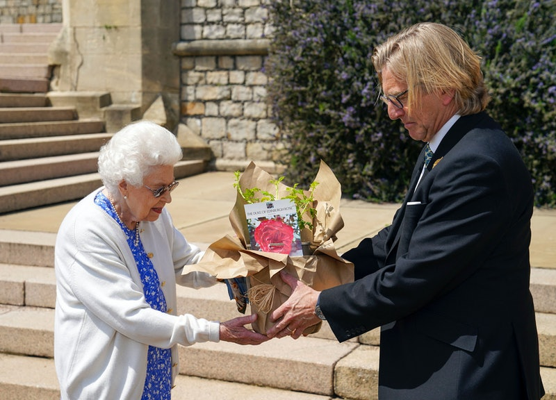 Britain's Queen Elizabeth II reacts as she is presented with a rose, named in memory of her late husband Prince Philip, the Duke of Edinburgh, by President of the Royal Horticultural Society, Keith Weed, at Windsor Castle in Windsor, west of London, on June 2, 2021. - The newly bred deep pink commemorative rose from Harkness Roses has officially been named in memory of the Duke of Edinburgh. A royalty from the sale of each rose will go to The Duke of Edinburgh's Award Living Legacy Fund which will give more young people the opportunity to take part in the Duke of Edinburgh Award. (Photo by Steve Parsons / POOL / AFP) (Photo by STEVE PARSONS/POOL/AFP via Getty Images)