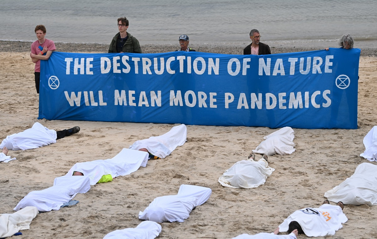 Activists hold a banner reading 'The destruction of nature will lead to more pandemics' as others po...