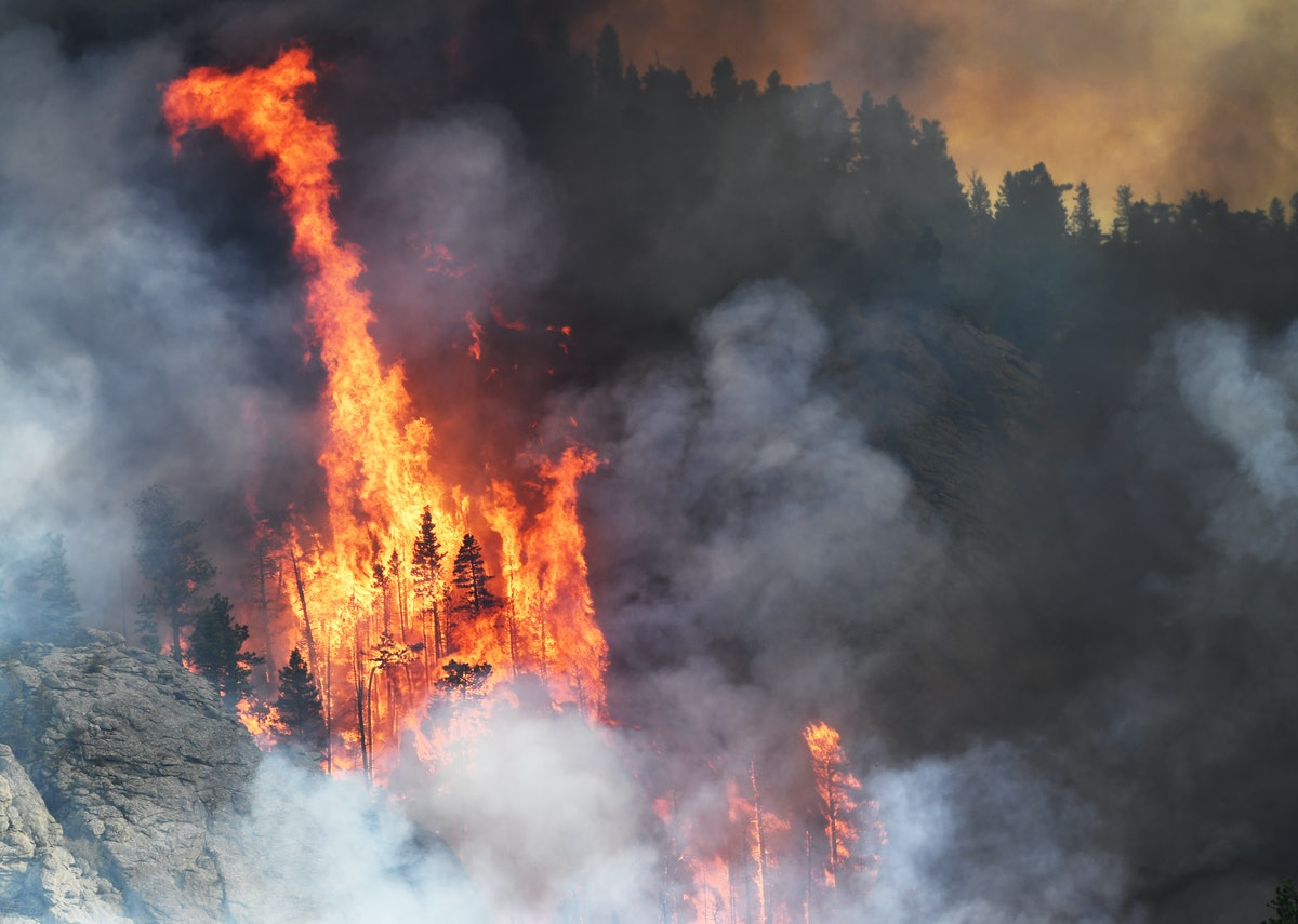 A wildfire burning in the Evergreen area of Jefferson County on July 13, 2020 in Denver, Colorado.