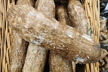 Cassava roots in a supermarket in Krakow, Poland on April 28, 2021. (Photo by Beata Zawrzel/NurPhoto...