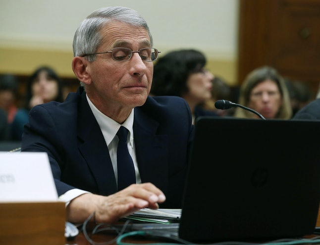 WASHINGTON, DC - FEBRUARY 10:  Anthony Fauci, director of the National Institute of Allergy and Infectious Diseases, looks at his computer during a House Foreign Affairs Committee hearing on Capitol Hill, February 10, 2016 in Washington, DC. The committee heard testimony from health officials on the Zika virus epidemic, and its threat to the Americas. (Photo by Mark Wilson/Getty Images)