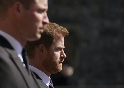 TOPSHOT - ALTERNATIVE CROP VERSION - Britain's Prince William, Duke of Cambridge, Peter Phillips and...