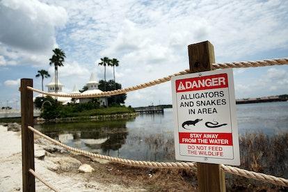 Disney World s'efforce d'assurer la sécurité des invités.