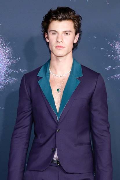 Celebrity Leo Shawn Mendes arrives at American Music Awards.