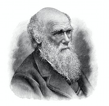 Steel engraving of naturalist Charles Darwin Original edition from my own archives Source : Meyers Konversations Lexikon 6.Auflage 1903