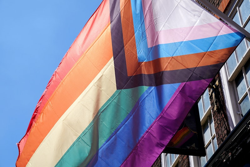 The progress flag flies outside a building. Not all queer identities are L, G, B, or T.