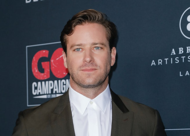 LOS ANGELES, CALIFORNIA - NOVEMBER 16: Armie Hammer attends the Go Campaign's 13th Annual Go Gala at...