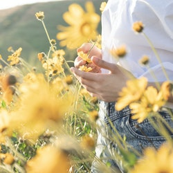 A woman stands in a field of wildflowers. According to numerology, here's what the day of the week you were born says about you.