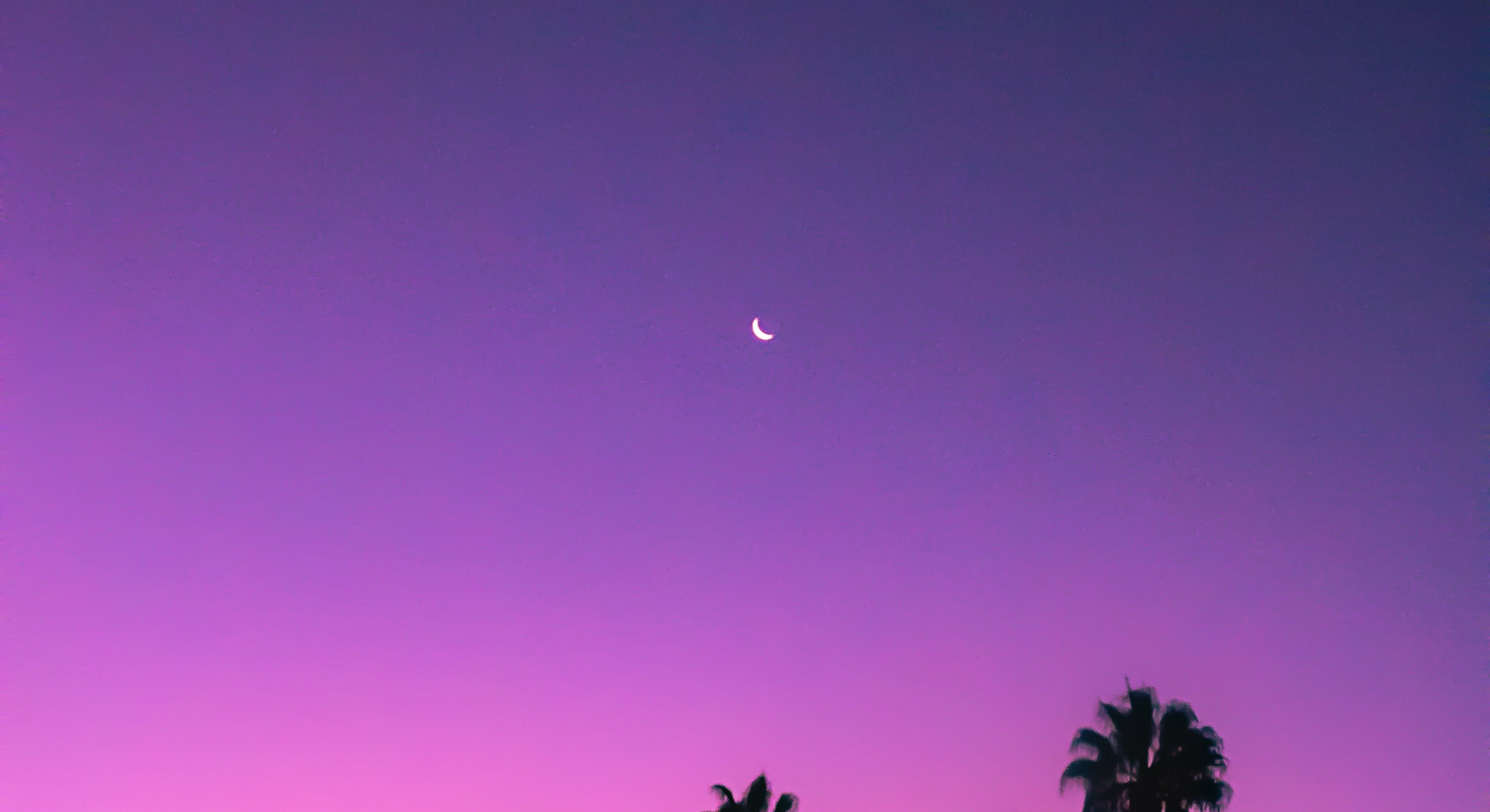 July's new moon brings a sweet new beginning for all zodiac signs.