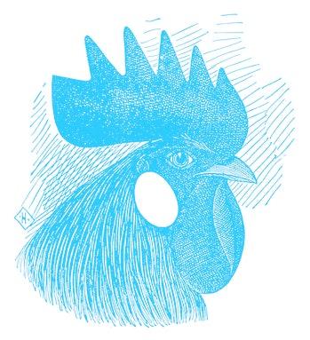 Antique illustration of head of single comb white leghorn cock