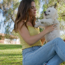 Dog-friendly public places you may not know about