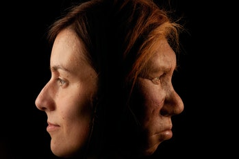 The Neanderthal woman was re-created and built by Dutch artists Andrie and Alfons Kennis. They used replicas of a pelvis and cranial anatomy from Neanderthal females for authenticity. The Neanderthal woman is shown here in comparison to a modern female.  (Photo by Joe McNally/Getty Images)
