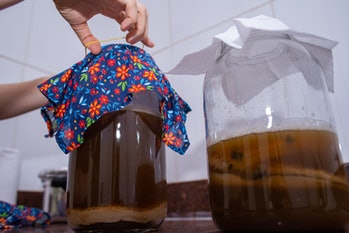 Kombucha, is traditionally obtained from the fermentation of sweetened tea from the leaves of the pl...