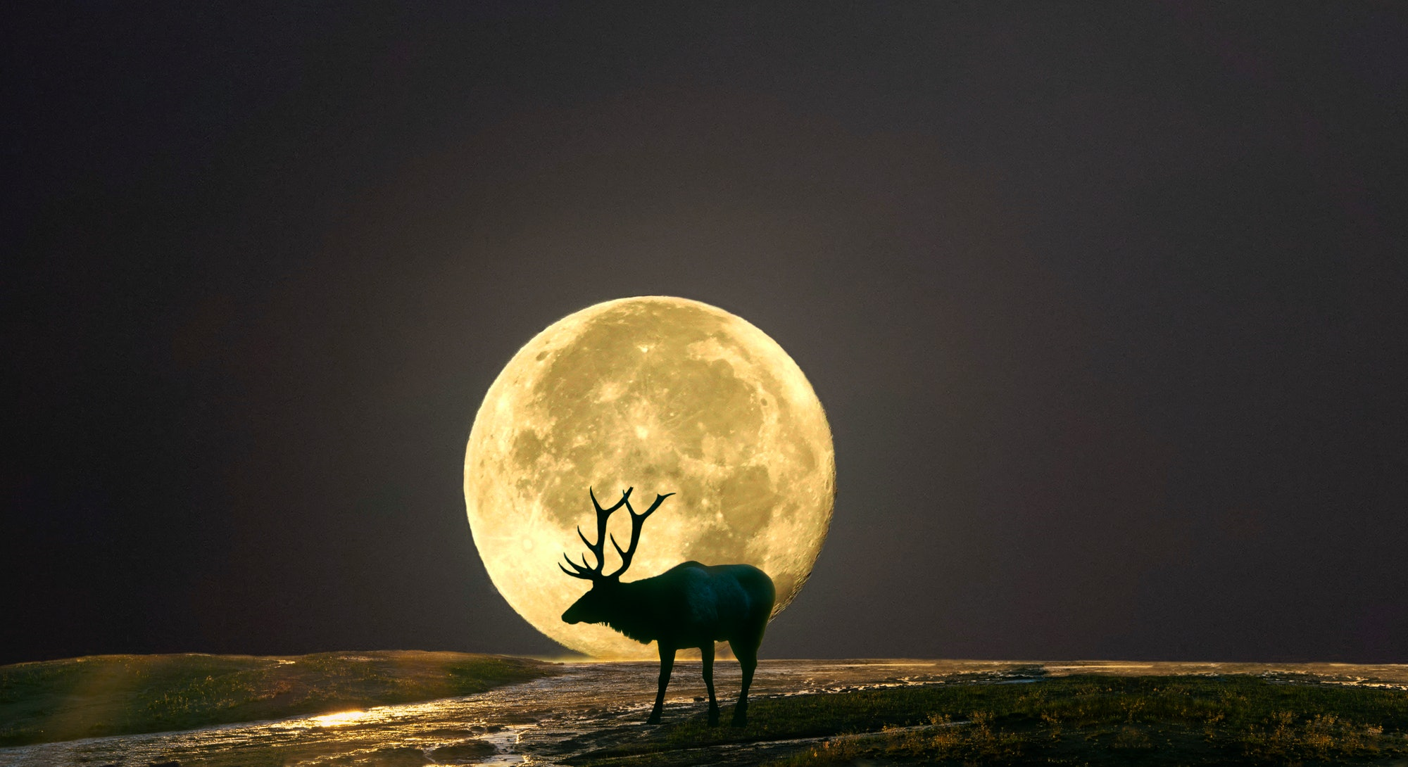 The Buck Moon signals the season when male deers fully grow into their antlers.
