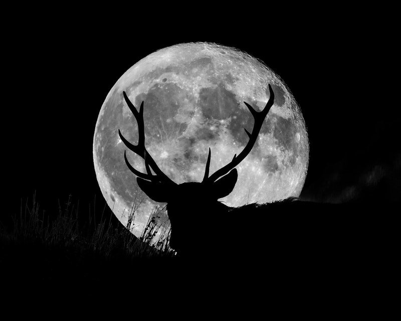 The July 2021 full Buck moon takes place in fixed air sign Aquarius.