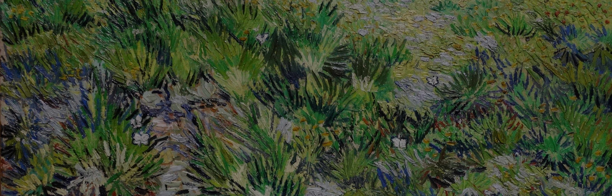 Vincent van Gogh, Dutch school. Long Grass with Butterflies, 1890. Oil on canvas (64.5 x 80.7 cm). L...