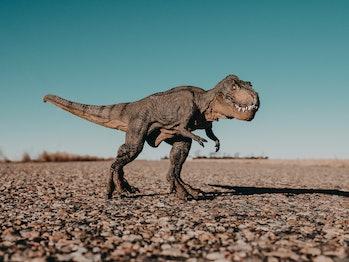 T-Rex Dinosaur on Road