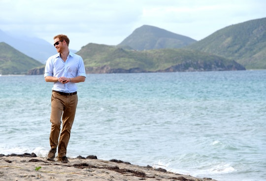 ST KITTS, SAINT KITTS AND NEVIS - NOVEMBER 23:  Prince Harry visits the Nevis turtle conservation pr...