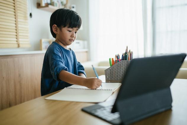 little boy doing work online