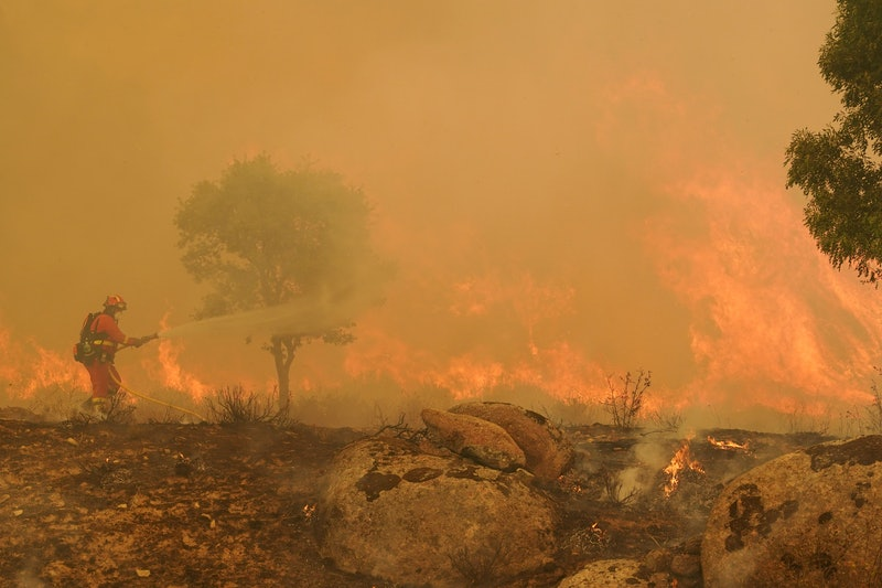 A firefighter operates at the site of a wildfire. To fight combat change, individuals can help by ma...