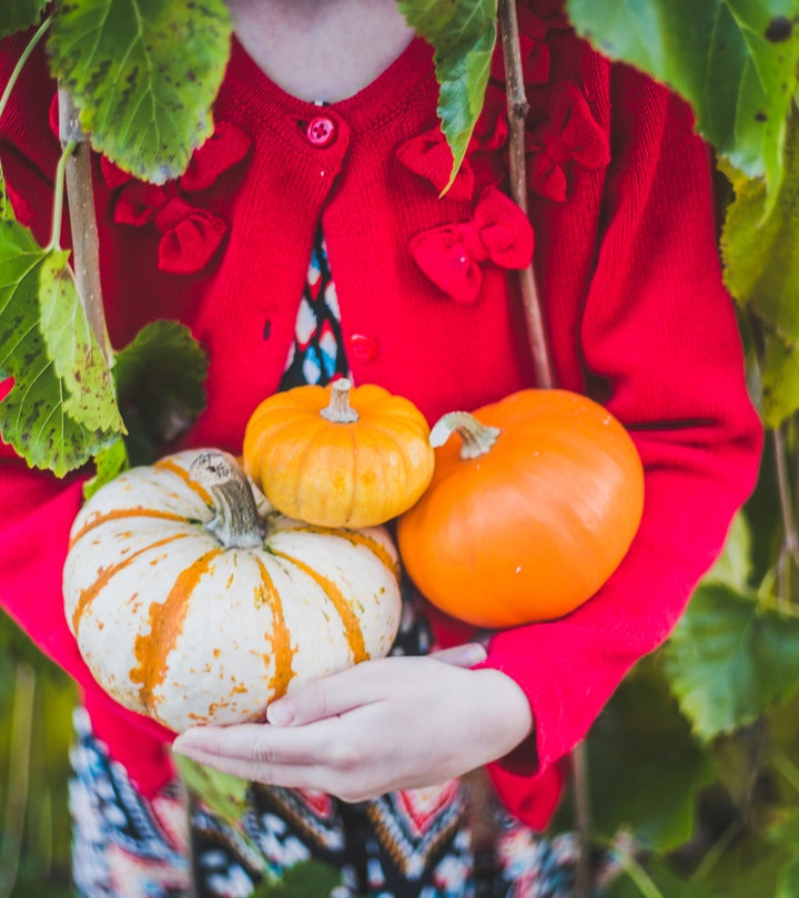Children's books about pumpkins for all ages.
