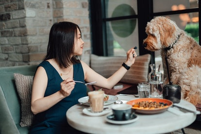 Enjoy a solo date.