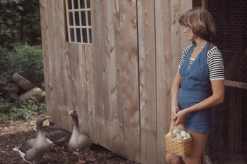American businesswoman Martha Stewart carries a basket of eggs from a chicken coop on the grounds of...