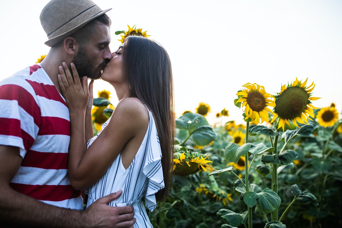 An attractive young couple is kissing in a sunflower field at sunset