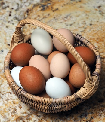 A basket of backyard chicken eggs of various colors.